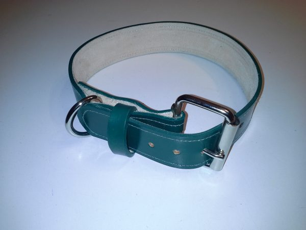 dog collors