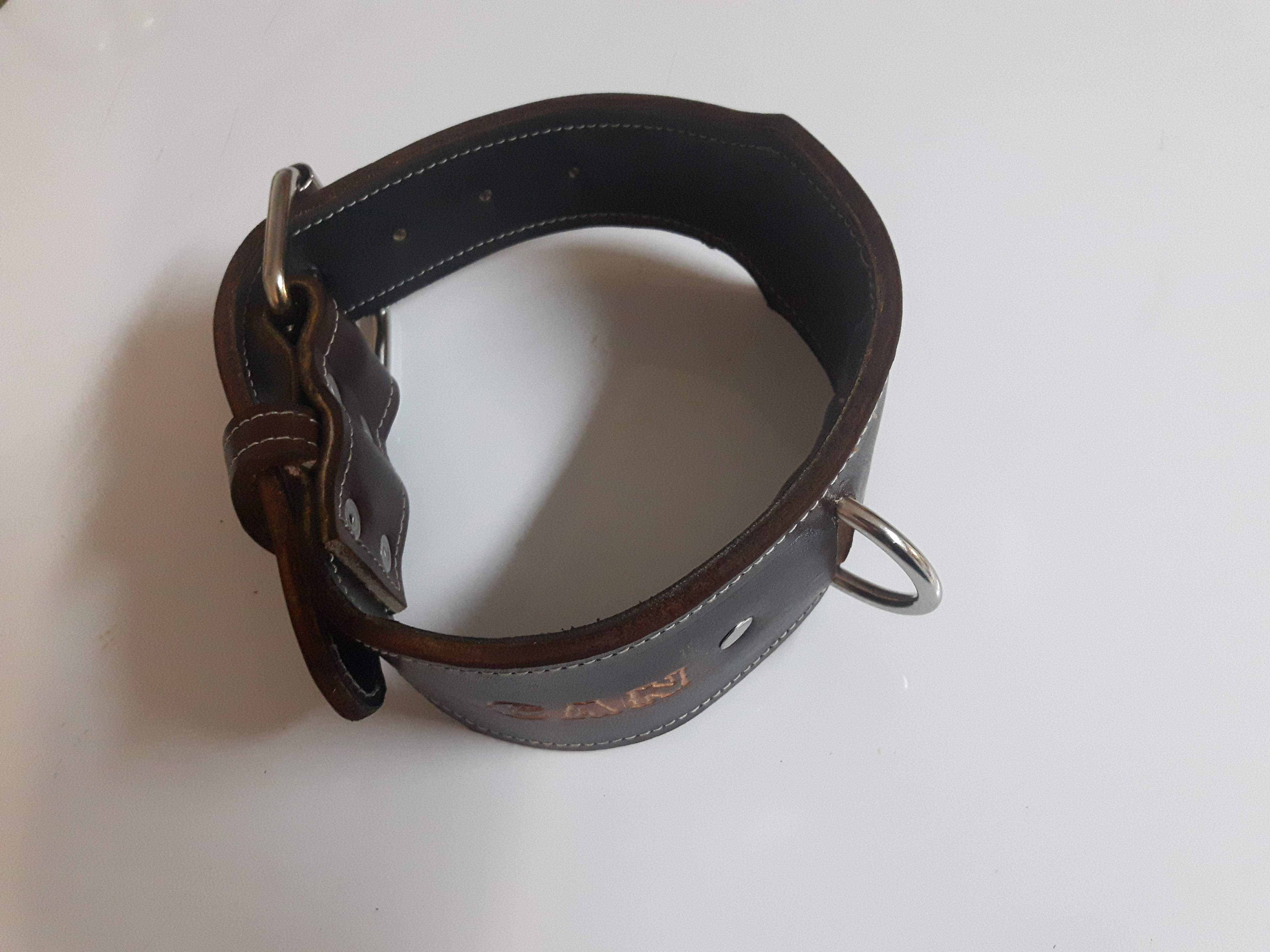 Leather Dog Collars Canada Enlight Designs Request