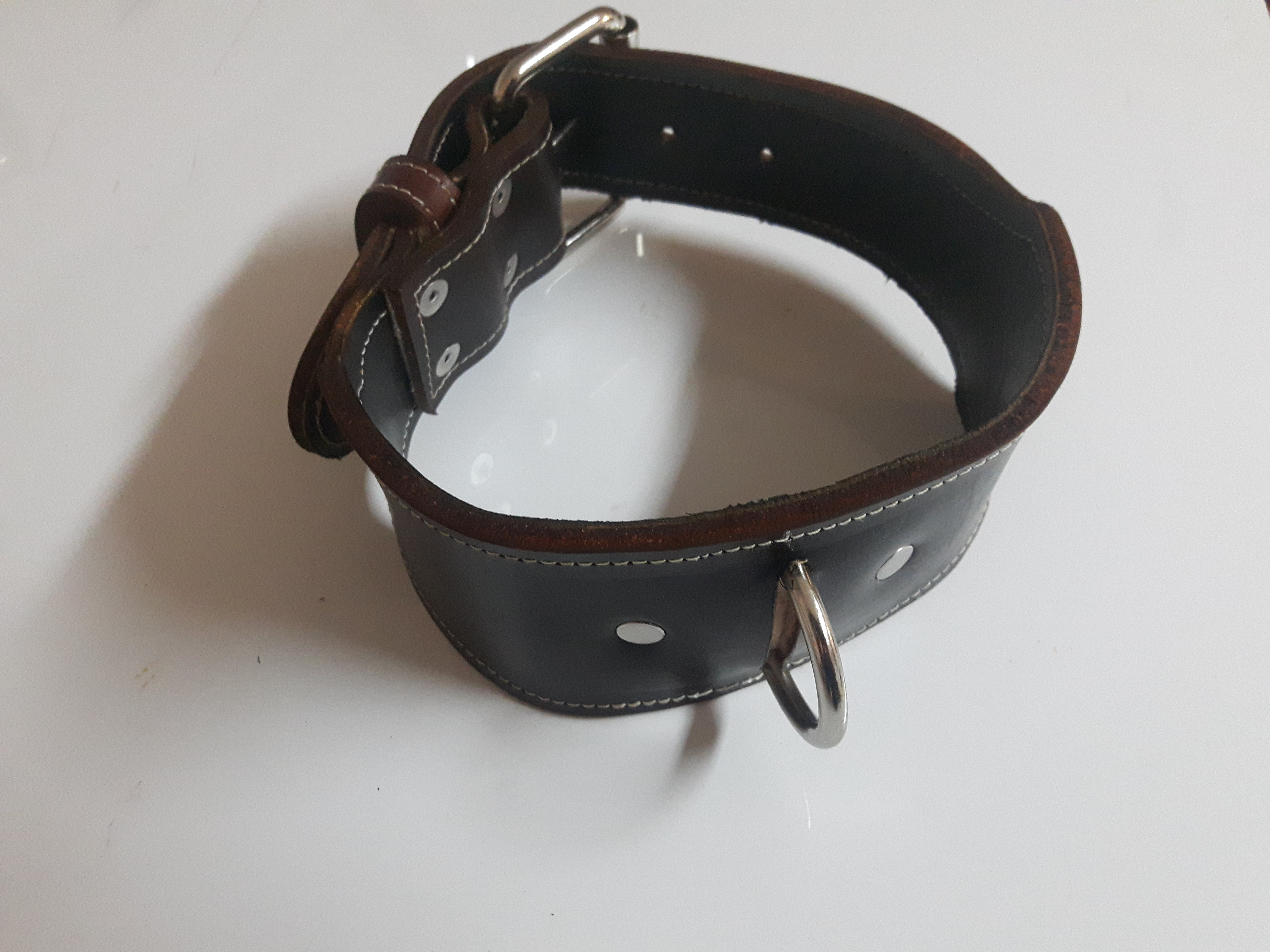 Quality Leather Handmade Dog Collars Enlight Designs